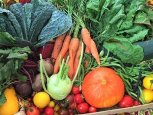 groenten-pakket