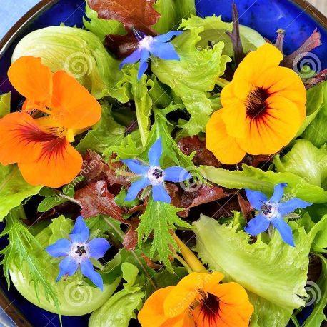 eetbare bloemen1